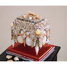 Currey and Company 1251 Beachcomber Shell Jewelry Box