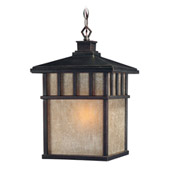 Barton Outdoor Hanging Lantern - Dolan Designs 9114-68