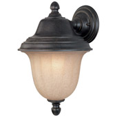 Traditional Helena Outdoor Wall Sconce - Dolan Designs 9128-68