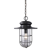 Elk Lighting 42286/1 Portside Outdoor Hanging Lantern