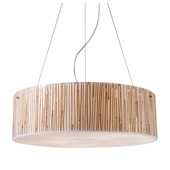 Transitional Modern Organics Pendant - Elk Lighting 19063/5