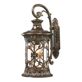 Orlean 1 Light Outdoor Sconce In Hazelnut Bronze - Elk Lighting 45081/1