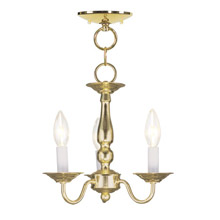 Livex Lighting 5009-02 Williamsburg Convertible Mini Chandelier