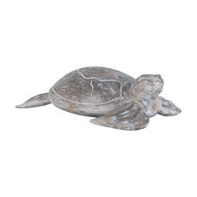 ELK Home 7159-045 Galapagos Island Wooden Turtle Sculpture